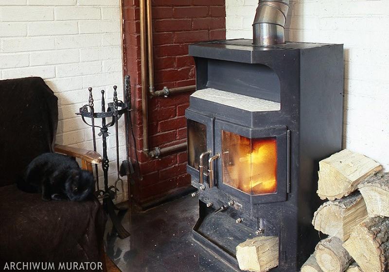 Jakie kary grożą za palenie śmieci? Jak palić drewnem w piecu i kominku?